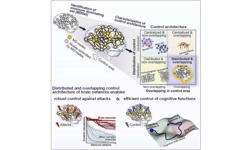 KAIST unveils the hidden control architecture of brain networks