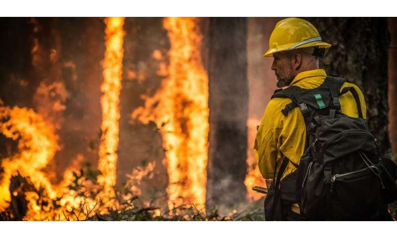 Long, cold winter won't affect fire season, says expert