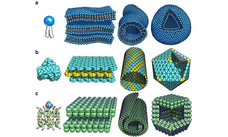 Mimicking how the biological world arranges itself could help advance the next generation of nanomaterials
