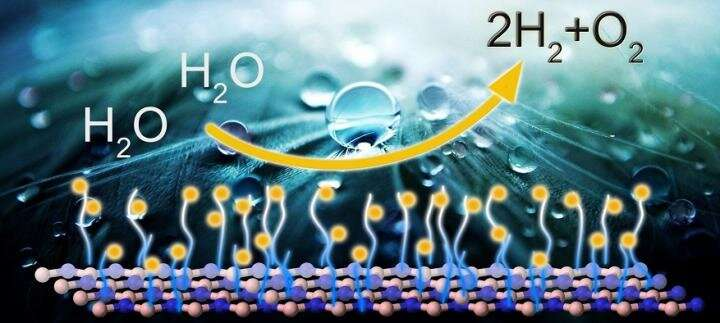 Modified 'white graphene' for eco-friendly energy