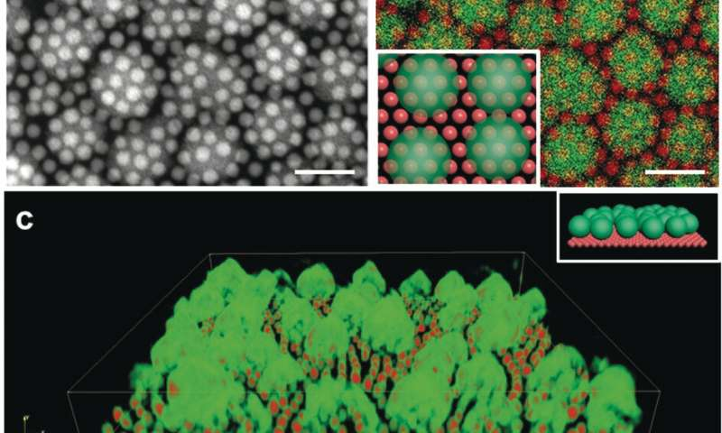 Nanocrystals get better when they double up with MOFs