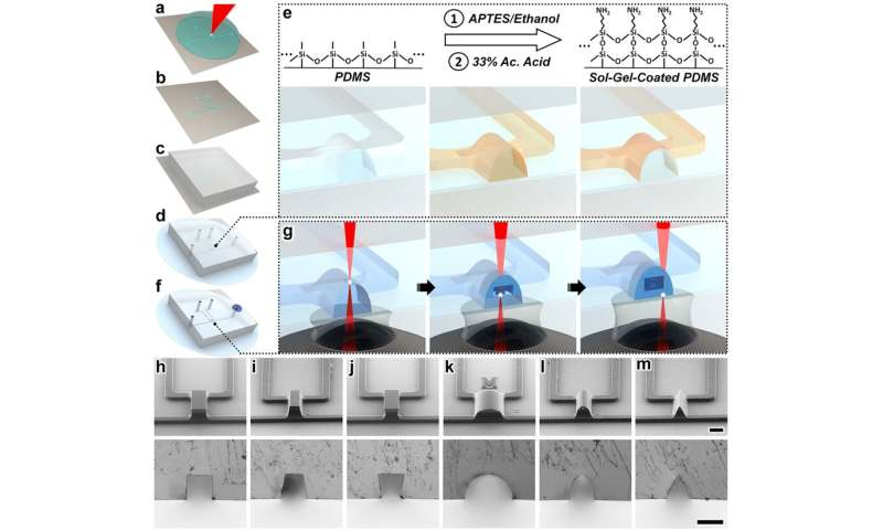 New 3-D nanoprinting strategy opens door to revolution in medicine, robotics
