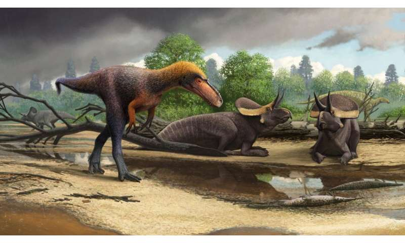 New 3-foot-tall relative of Tyrannosaurus rex