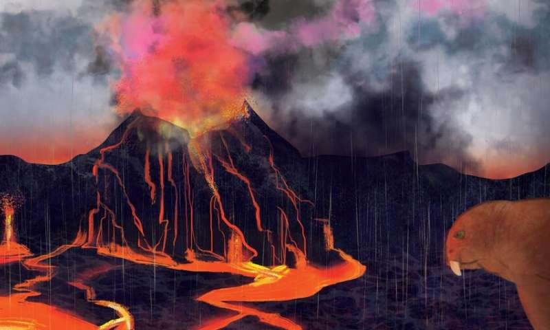 New evidence suggests that volcanoes caused the largest mass extinction ever