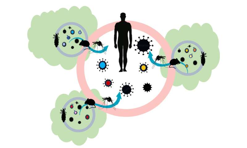 New hypothesis links habitat loss and the global emergence of infectious diseases
