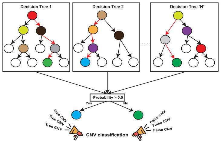 New method helping to find deletions and duplications in the human genome