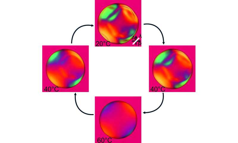 New method inverts the self-assembly of liquid crystals