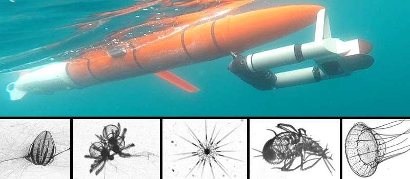 New robot can sense plankton optically and acoustically