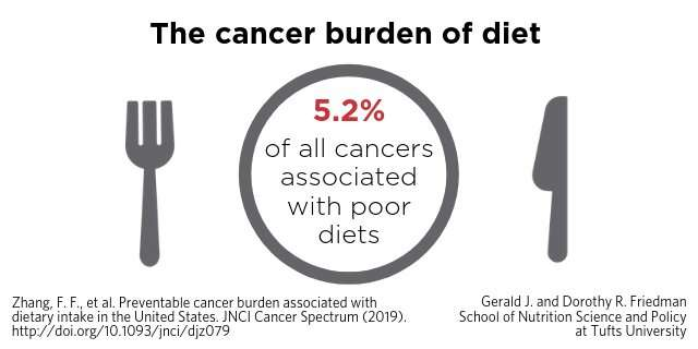 New study estimates preventable cancer burden linked to poor diet in the US