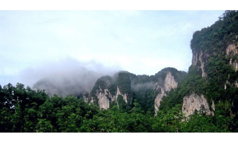 Northern tropical dry trend may just be normal variation: scientists