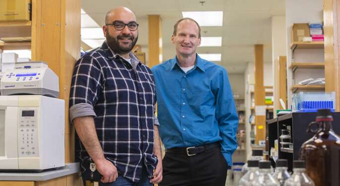 Novel DNA repair mechanism preserves genome integrity