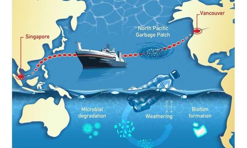 太平洋を横断する調査航路