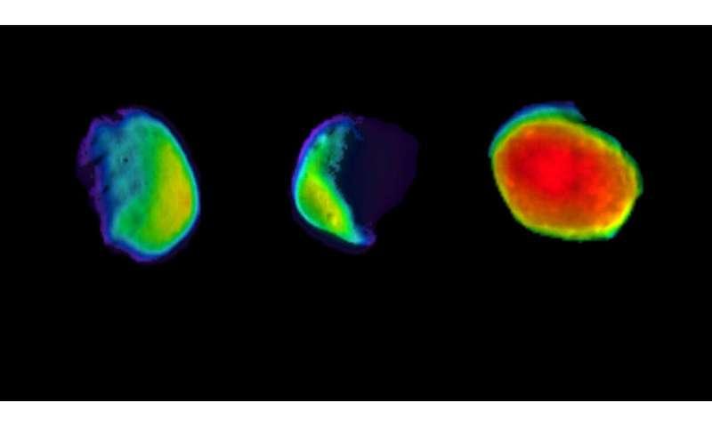 Три вида марсианской луны на Фобосе