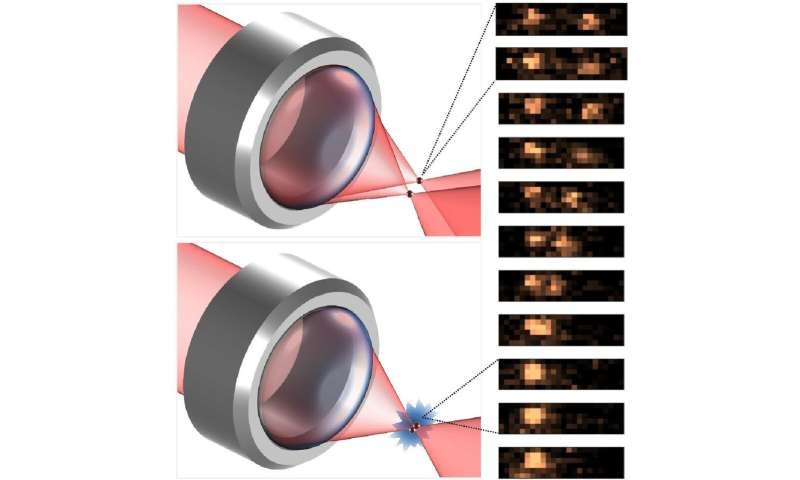 Otago's atom interaction discovery valuable for future quantum technologies