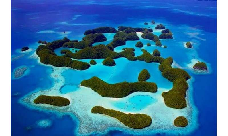 Palau is a Pacific Ocean archipelago made up of hundreds of islands