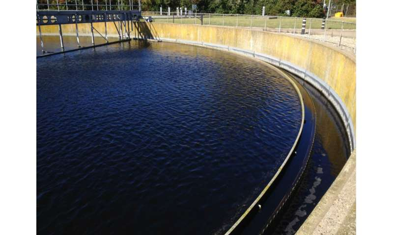 Pathogenic, drug-resistant bacteria found in wastewater treatment plants