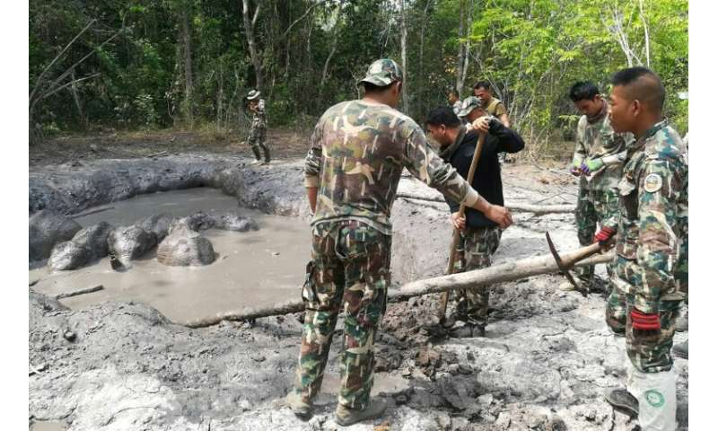 Patrolling rangers chanced upon the struggling herd in a national park east of Bangkok