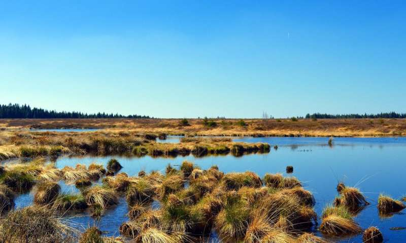 Taking the pulse of peatland carbon emissions could measure climate impact of development
