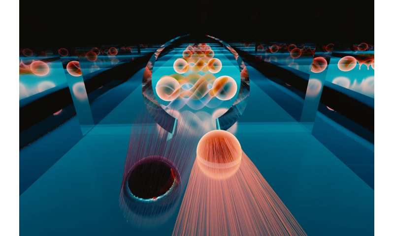 Perfect quantum portal emerges at exotic interface