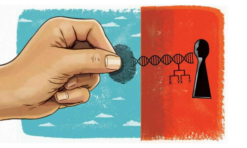 Perspectives on gene editing
