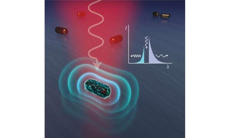 Plasmonic pioneers fire away in fight over light