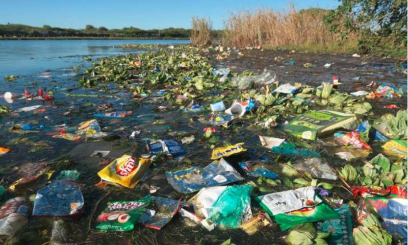 Plastic poses a major environmental threat—but is it being overstated?