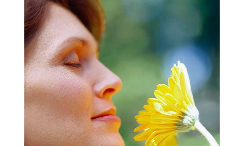 Poor olfaction tied to elevated long-term mortality in seniors