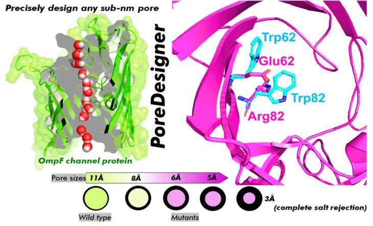 PoreDesigner improves protein channel design for water treatment, bioseparations