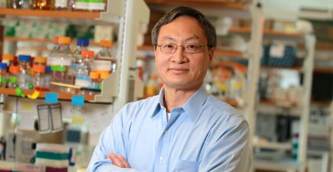 Potential drug targets for ALS and FTD identified in two Fen-Biao Gao studies
