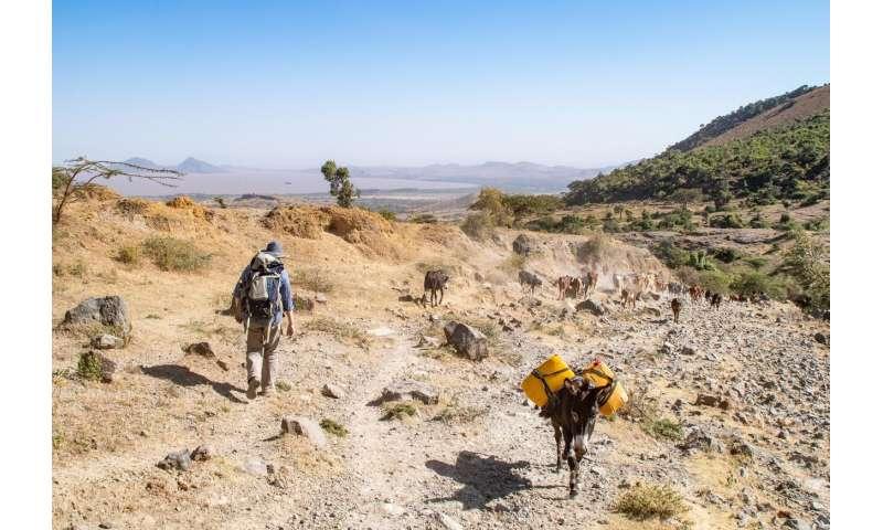 Rare volcanic rocks lift member on little-studied eruptions