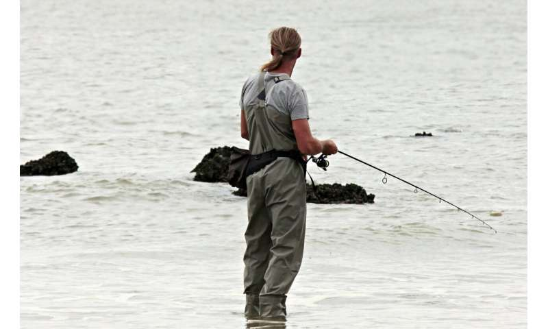 Fishing for fun, not food: Study takes stock of recreational fishing impacts