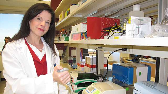 Research could lead to more precise diagnosis and treatment of ovarian cancer