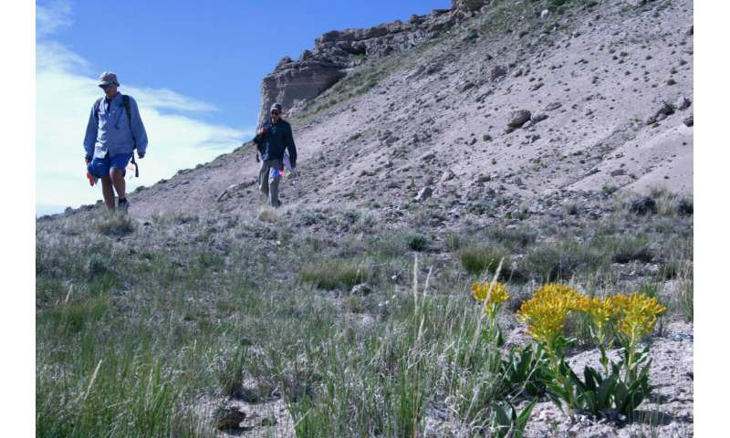 Research provides insight on survivability of rare Wyoming plant