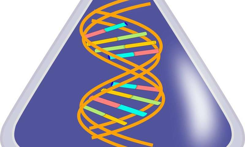 Study shows how the nervous system can transmit information across multiple generations Rna