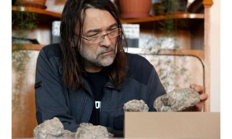 Romanian palaeontologist Matyas Vremir and a team of researchers found that the fossilized eggs discovered in 2011 belonged to t