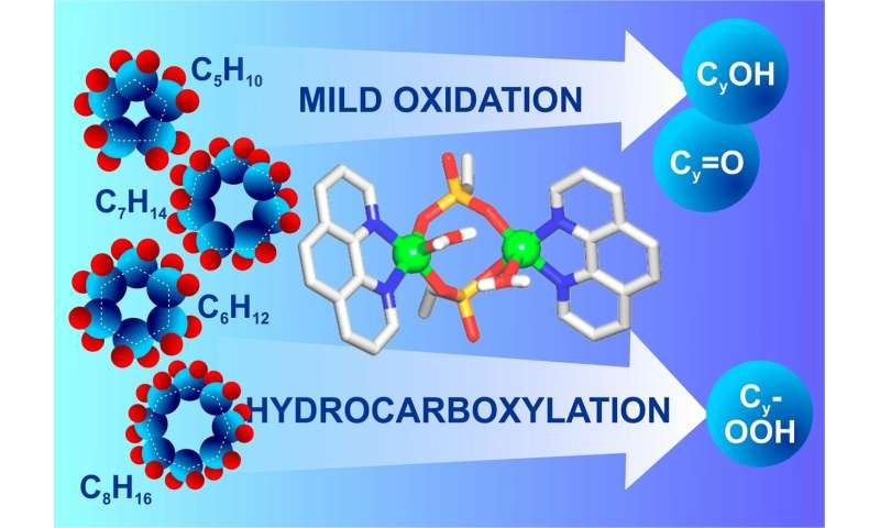 RUDN Chemists Developed a Catalyst to Oxidize Alkanes in Mild Conditions