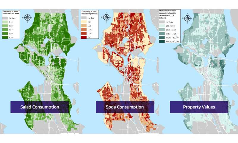 Salad Soda And Socioeconomic Status Mapping A Social Determinant - Soda-map-of-the-us