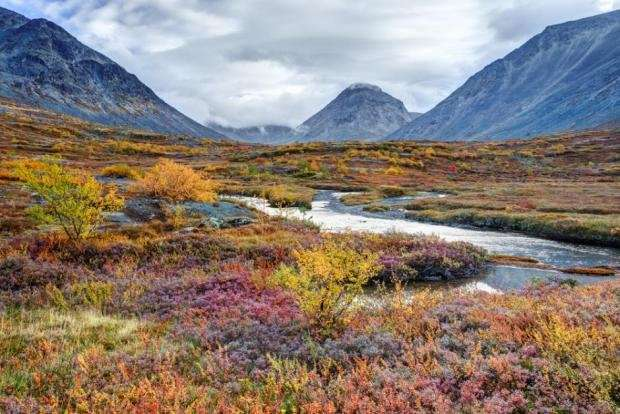 Should we say farewell to the Arctic's unique nature?