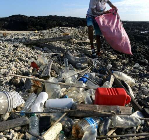 Since the start of the year, eight tons of garbage has been collected by volunteers on the Galapagos Islands