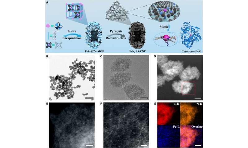 Single-atom Nanozymes
