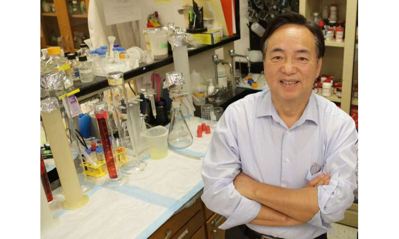 Single-chain insulin would change dosage, production