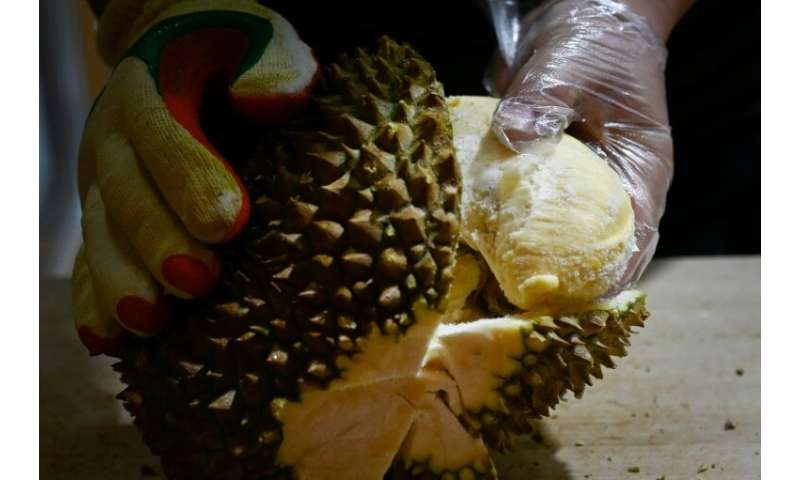 Soaring demand for durians in China is being blamed for a new wave of deforestation in Malaysia with environmentalists warning v