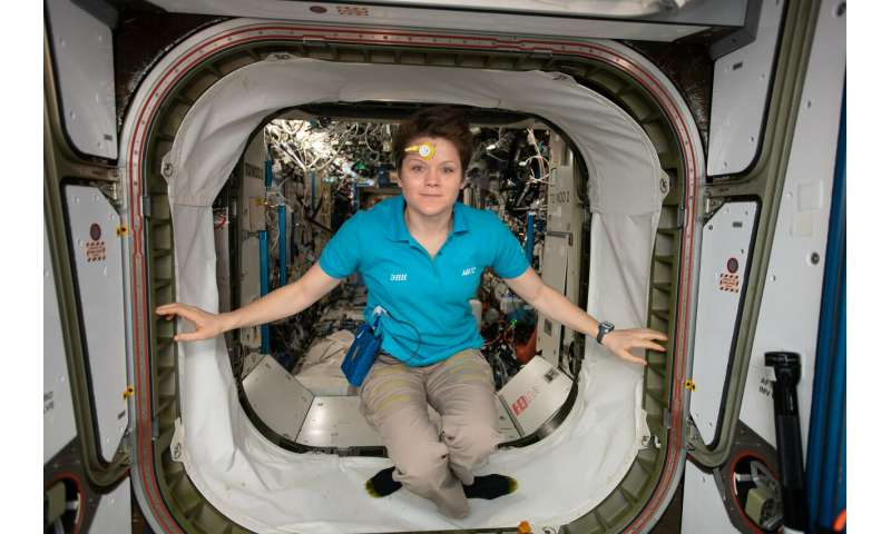 Space behaviour