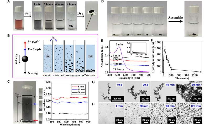 Specific ion effects directed noble metal aerogels