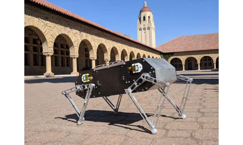 Stanford Doggo: a highly agile quadruped robot