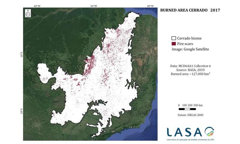 Study could improve fire monitoring in Brazilian savana