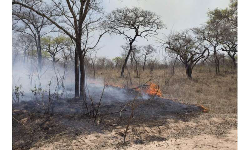 Study finds increased moisture facilitated decline in African fires