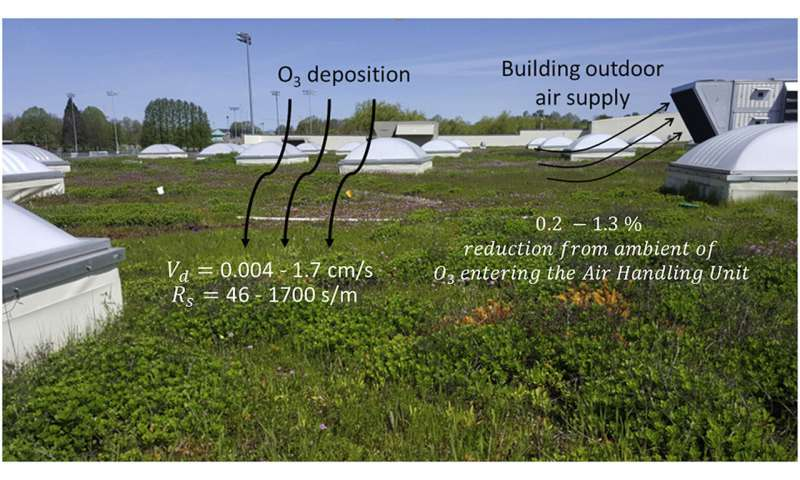 Study shows green roofs could reduce indoor air pollution