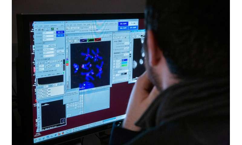 Study unlocks secrets of an elusive genome compartment