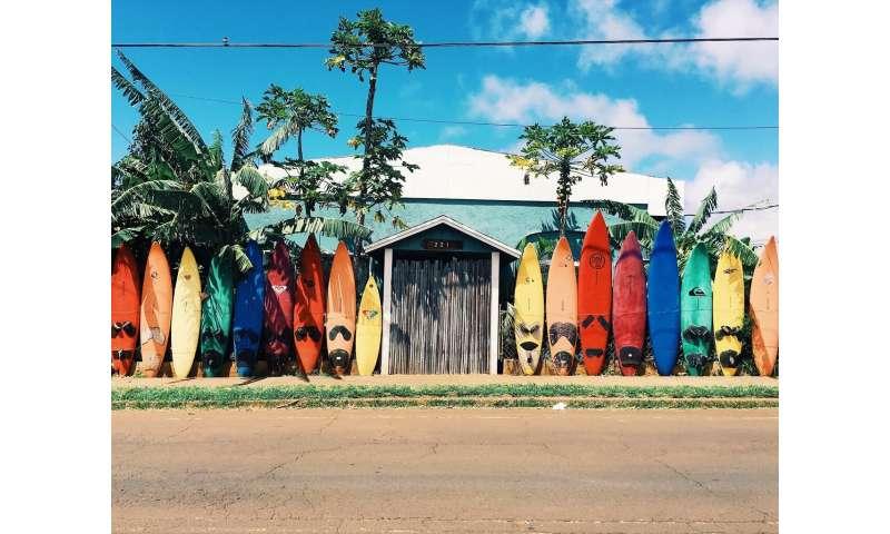 Surfing on bio-based boards